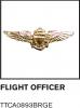 navy_tietack_flightofficer